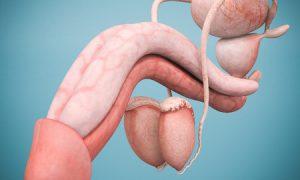 Penis Eichel Infekttion - Urheber: mrgarry / 123RF