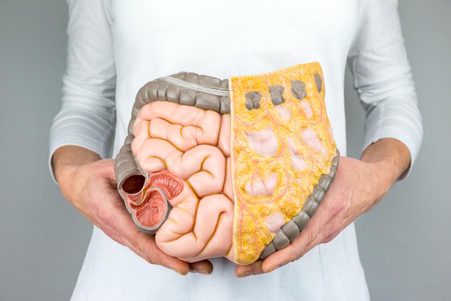 Blut Am After Ursachen Und Gründe Für Anale Blutungen